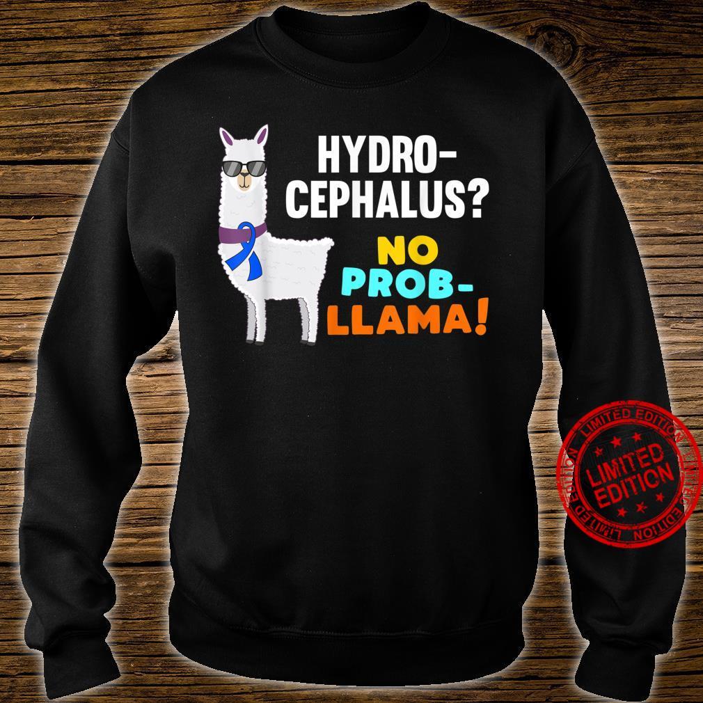 No ProbLlama Hydrocephalus Warrior Survivor Awareness Shirt sweater